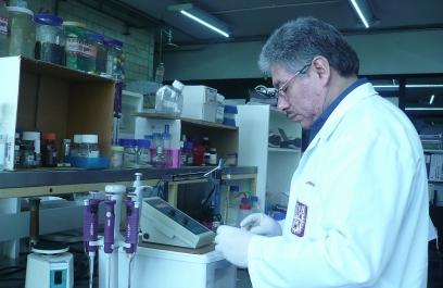 Encuentran investigadores mexicanos moléculas capaces de eliminar células cancerígenas