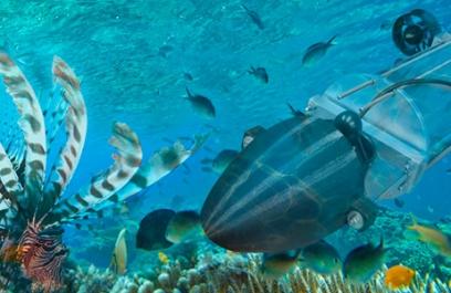 A la caza del pez león con un robot submarino