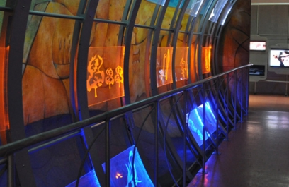 Mes de la Evolución en Universum, Museo de las Ciencias